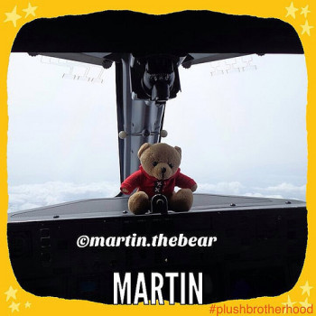 Martin - The Plush Brotherhood